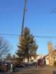Karácsonyfa állítás (2013)-18