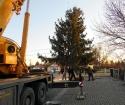Karácsonyfa állítás (2013)-24